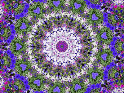 Digital Art - Flower Garden 3 by Rhonda Barrett