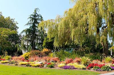 Photograph - Flower Garden by Pamela Walrath
