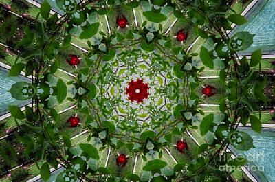 Digital Art - Flower Kaleidoscope by Donna L Munro