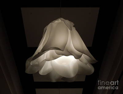 Photograph - Flower Light 1 by Renee Trenholm