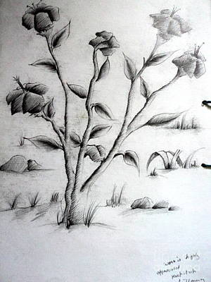 Drawing - Flower Plant by Tanmay Singh