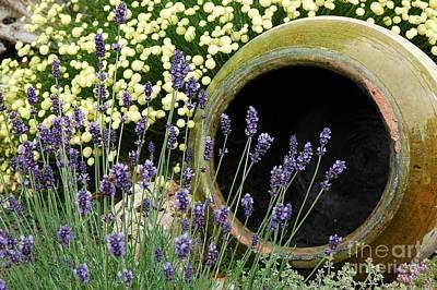 Photograph - Flower Pot 5 by Allen Beatty