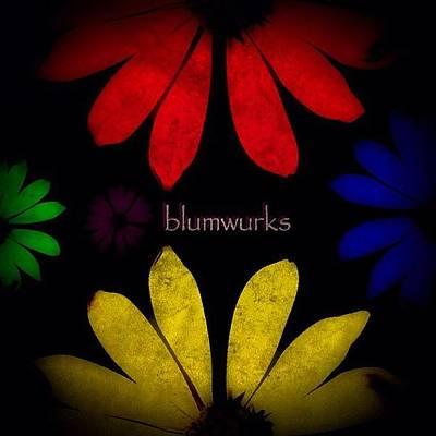 Iphoneonly Photograph - Flower Power by Matthew Blum