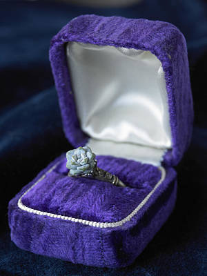 Floral Engagement Ring Photograph - Flower Ring In Purple Box by Jeremy Samuelson