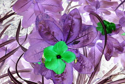 Painting - Flower1 by Dawn Hough Sebaugh