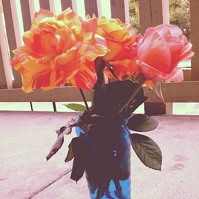 Flowerbed.  #flowers #vase #colorful Art Print