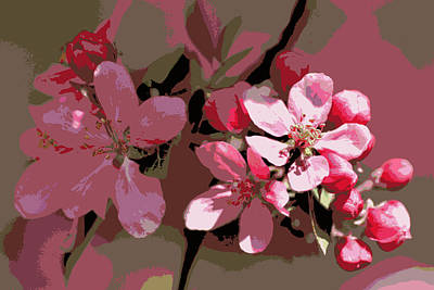 Photograph - Flowering Crabapple Posterized by Mark J Seefeldt