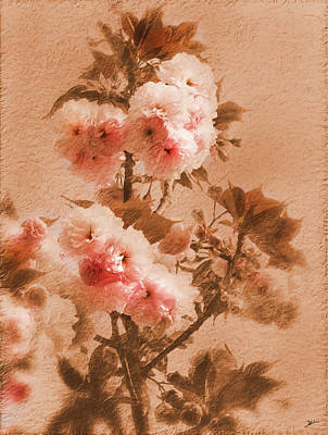 Peach Tree Photograph - Flowering Peach Tree 2 by Heinz G Mielke