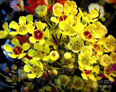 Photograph - Flowers - Digital Computer Painting by Merton Allen