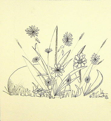 Still Life Drawings - Flowers among Weeds and a Rock by Dennis Casto