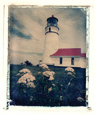 Photograph - Flowers And Light House by Joe  Palermo