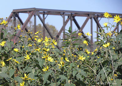 Karen Jordan Wall Art - Photograph - Flowers And Trestle by Karen Jordan
