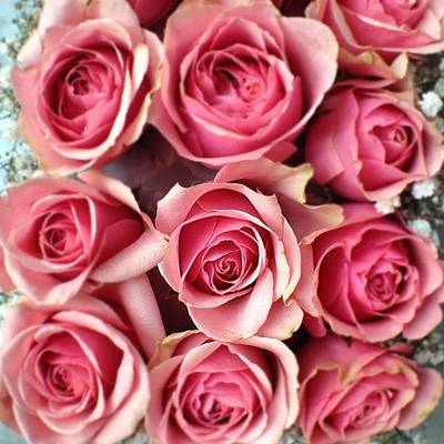 Bouquet Photograph - #flowers #bouquet #uae #idea #ideas by Omar Alzaabi