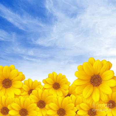 Flowers Over Sky Art Print by Carlos Caetano