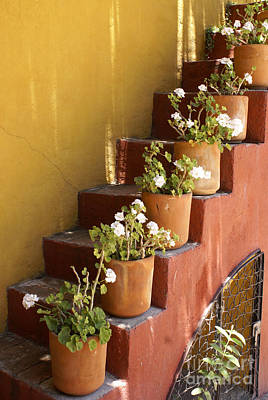 Photograph - Flowery Staircase San Miguel De Allende Mexico by John  Mitchell