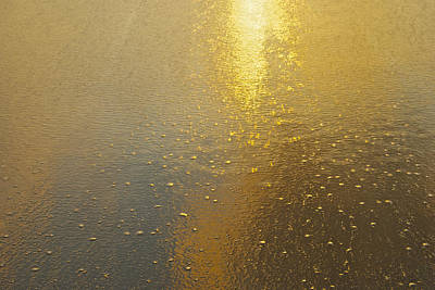 Flowing Gold 7646 Art Print by Michael Peychich
