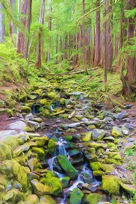 Photograph - Flowing Through The Woods II by Heidi Smith
