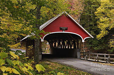 Photograph - Flume Gorge Covered Bridge - D007240 by Daniel Dempster