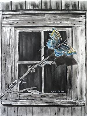 Drawing - Fly Away Free by Carla Carson