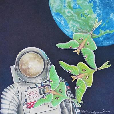Luna Moth Drawing - Fly Me To The Moon by Melissa J Szymanski