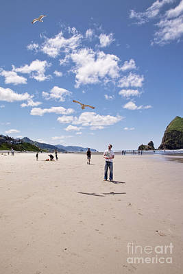 Photograph - Flying A Bird Kite Near Haystack Rock Canon Beach Oregon Usa by Sherry  Curry