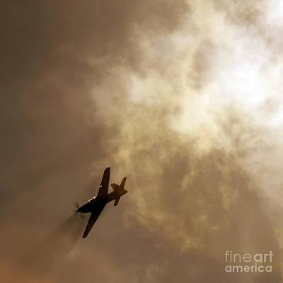 Flying High Print by Angel  Tarantella