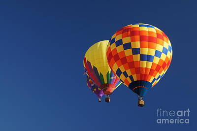Photograph - Flying High by Benanne Stiens