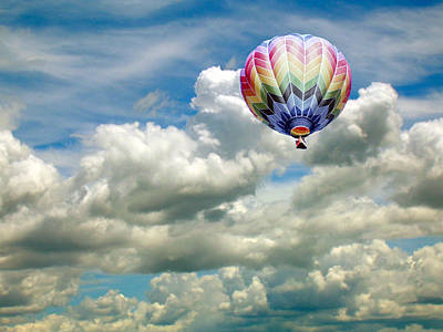 Photograph - Flying High by Bonnie Muir