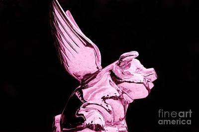 Photograph - Flying Pink Pig by Lynda Dawson-Youngclaus