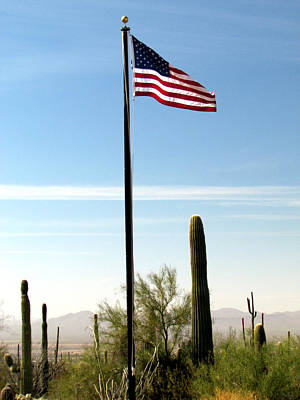 Photograph - Flying Proudly Over Arizona by Judy Wanamaker