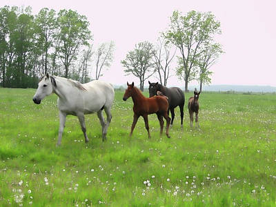 Mixed Media - Foals And Mares On A Foggy Morning by Bruce Ritchie