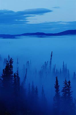 Fog At Dawn, Stewart Crossing, Yukon Art Print by Mike Grandmailson
