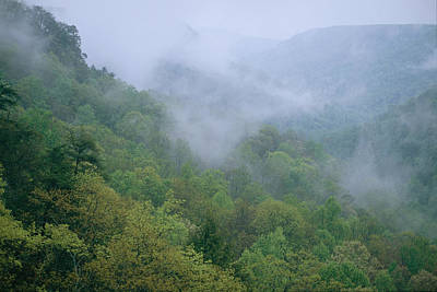 Fog Drifts Across A Cove In Tennessee Art Print by Stephen Alvarez