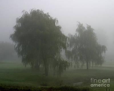 Fog II Art Print