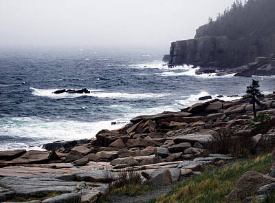 Maine Islands Photograph - Fog In Acadia by Skip Willits