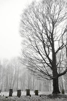 Photograph - Fog N Grave by Emily Stauring