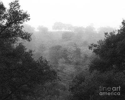 Photograph - Fog On A California Hill Photograph by Kristen Fox