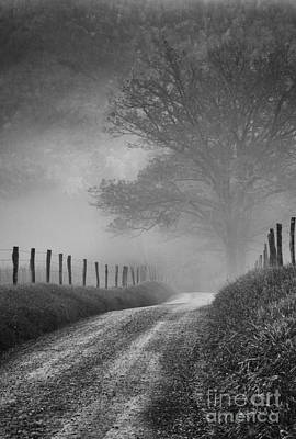 Photograph - Fog On Sparks Lane by David Waldrop