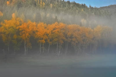 Photograph - Foggy Autumn Morning by Albert Seger