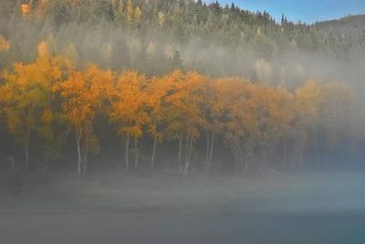 Photograph - Foggy Autumn Morning by Albert Seger