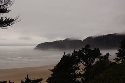 Photograph - Foggy Day by Angi Parks
