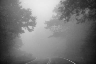 Photograph - Foggy Drive by Heather Applegate