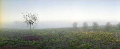 Foggy Foggy Day Original by Jan W Faul