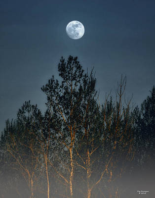Foggy Forest With Full Moon Print by Peg Runyan