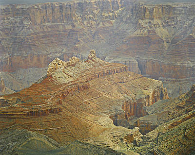 Photograph - Foggy Grand Canyon by M K Miller