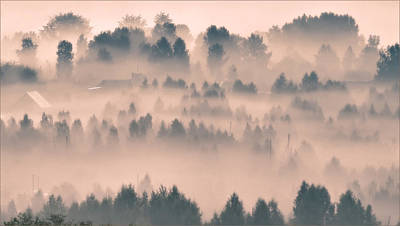 Foggy Morning 21 Art Print