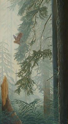 Coniferous Painting - Foggy Morning Flight - Barred Owl by Shawn Shea