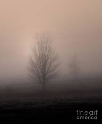 Art Print featuring the photograph Foggy Pasture by Deborah Smith