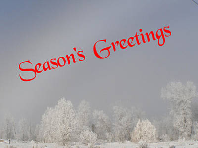 Photograph - Foggy Seasons Greeting by DeeLon Merritt