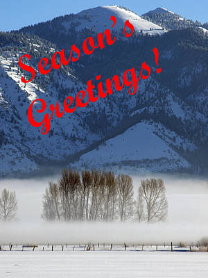 Photograph - Foggy Season's Greetings by DeeLon Merritt